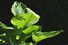 Keramikgarten-09